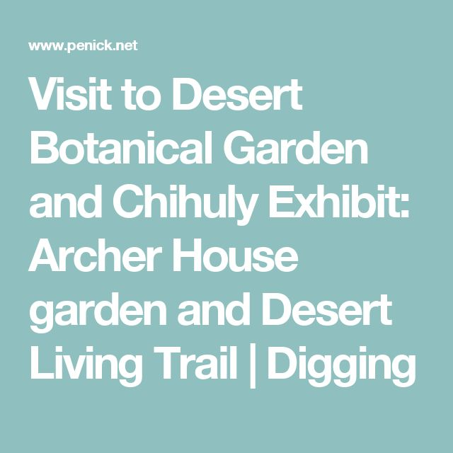 Visit to Desert Botanical Garden and Chihuly Exhibit: Archer House garden and Desert Living Trail | Digging