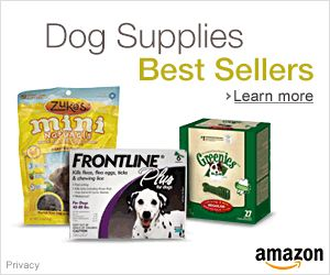 1000 Ideas About Large Breed Puppy Food On Pinterest