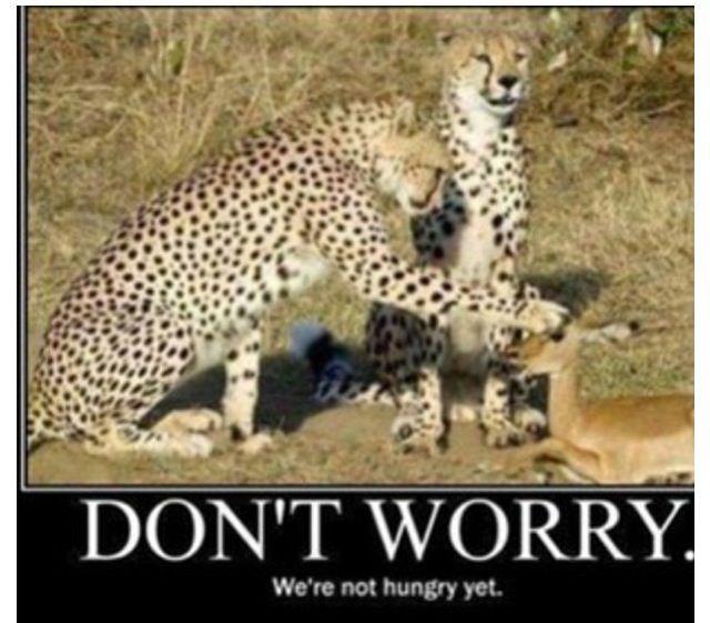 Dont Worry Hahahahaha Funny Pinterest