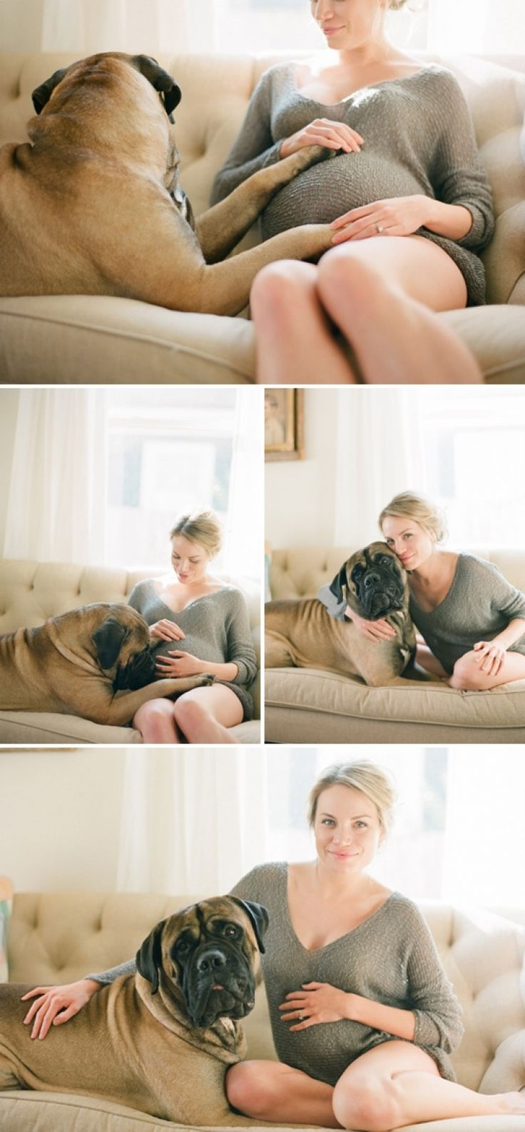 Maternity Pics with the Pups. I am in love with this! So doing this with Braxton & Betty... One day!