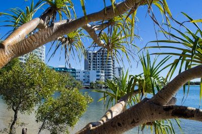 We lived in Maroochydore for a year and a bit, what a great place to live! Great beach and surf, great mountains to climb and Mooloolaba and Noosa around the corner. We will be back sometime...