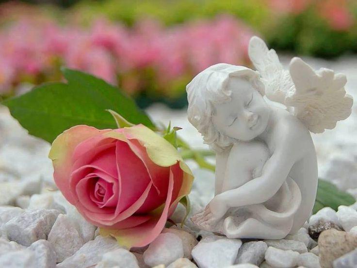 обои ангел с цветами красивые картинки объяснить ребенку основные