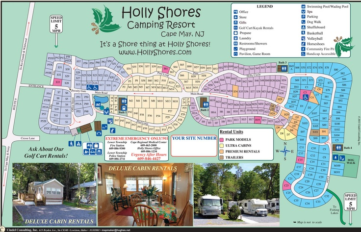 Holly Shores Camping Resort Cape May Travel And