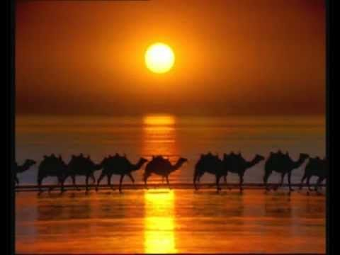 Camels At Sunset In Broome. Check out http://www.ozehols.com.au/holiday-accommodation/western-australia/kimberley/broome for Broome accommodation, Broome resorts and hotels. #Broome #Australia #WA #holidays #places