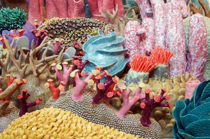 Courtney Mattison Ceramic Coral Reef Coral Reef Conservation Art in Embassies Coral Reef Drawing, Ocean Projects, Systems Art, Colossal Art, Installation Art, Ceramic Art, Climate Change, Delicate, Crafts