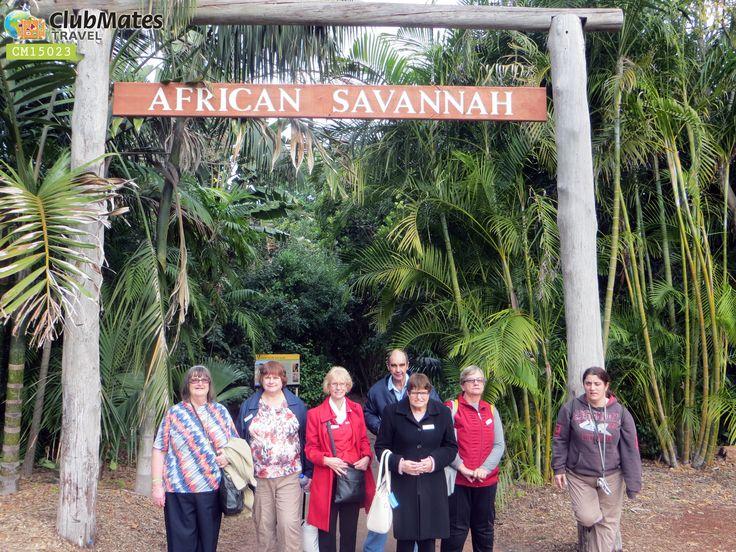 Clubmates @ African Savannah