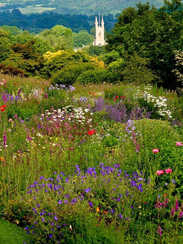 Idyllic English country garden with distant church spire - Yelverton, Devon