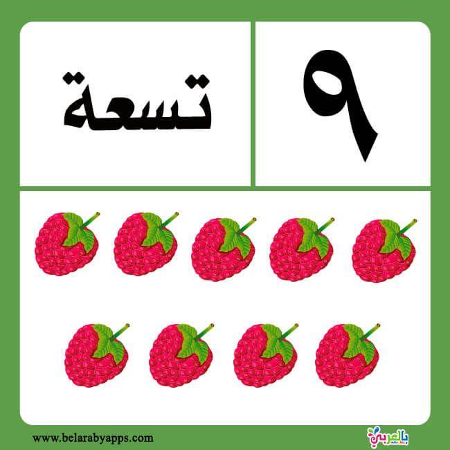 تعليم الارقام العربية للاطفال بطاقات الارقام بالحروف جاهزة للطباعة بالعربي نتعلم Preschool Math Worksheets Arabic Alphabet For Kids Arabic Kids