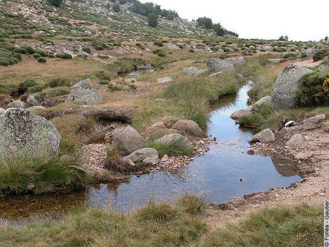 Rivière étiage 2
