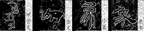 中国の文字