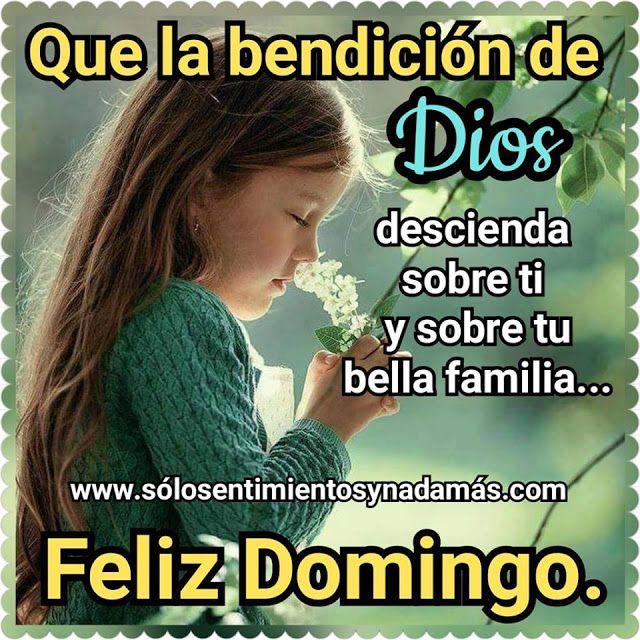 Que La Bendicion De Dios Descienda Sobre Ti Feliz Domingo