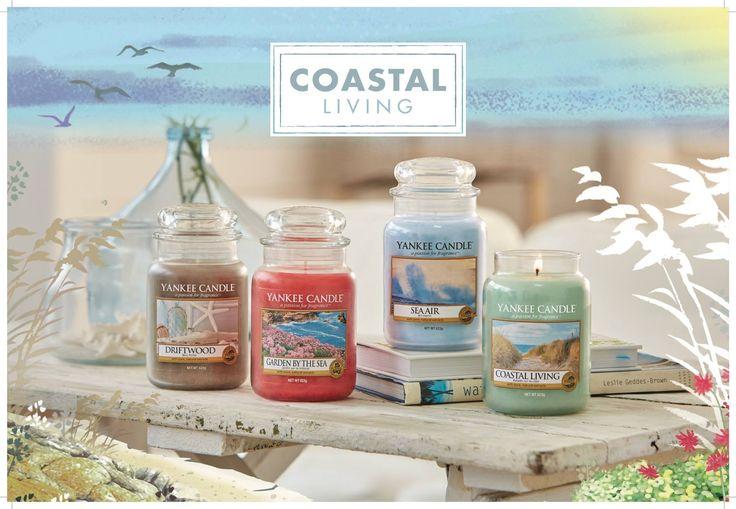 Recrea una experiencia oceánica con las nuevas cuatro fragancias de la colección Coastal Living. Refresca tu casa con las delicadas flores de Garden by the Sea, transpórtate a la orilla del mar con Sea Air, y déjate llevar por el encantador aroma de Driftwood.