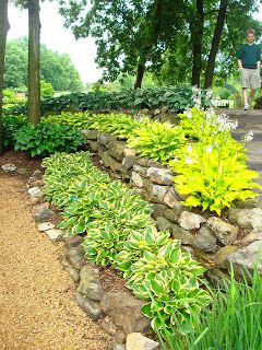 70 Best Gardening Images On Pinterest Gardening Landscaping And Beautiful Gardens