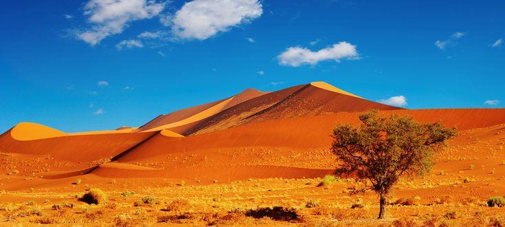Namibië is een land met fascinerende landschappen en bijzondere natuurverschijnselen en heeft zijn naam te danken aan de Namib woestijn. Eén van de oudste en uniekste woestijnen ter wereld. Namibië is het meest dunbevolkte land van Afrika en heeft een onweerstaanbare aantrekkingskracht op mensen door onder andere de enorme stilte in de woestijnen en de prachtige kleuren die de zon over het landschap tovert. Tijdens deze prachtige privéreis komt u langs alle hoogtepunten die dit land te…