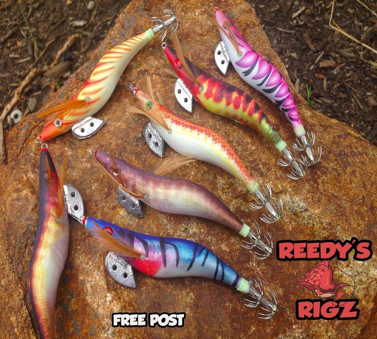 6x squid jig with awesome colours and 3D eyes Egi fishing prawn intimation