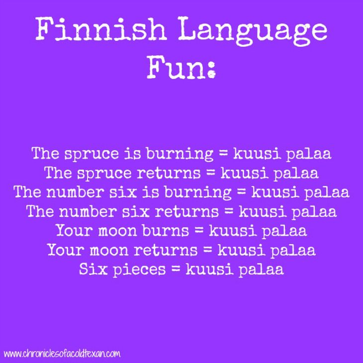Finnish Language Fun