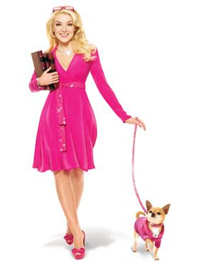 $61.54 Bruiser's Outfit - Pink Sweater / Diamante Collar & Lead Set The Pink Knitted Turtle Neck Sweater and Crocodile Pink Collar are both worn by Bruiser the Chihuahua in Legally Blonde The Musical, starring in London's West End. Give your pup star quality and save when you buy both together!