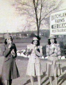 dutchlandfarmsicecream