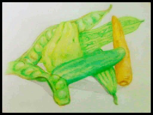 """vegetable tropic"" pencil colour in papper"