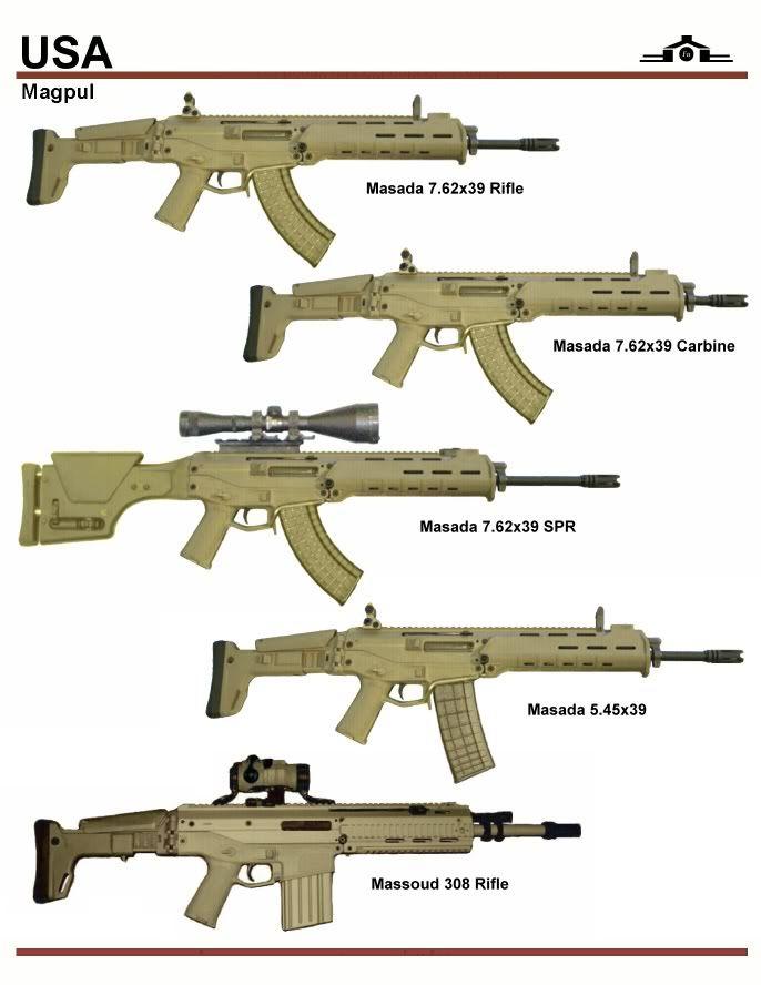 MagPul PTS Masada Bushmaster ACR- Reviewed by Scuffer. | Asoft ...