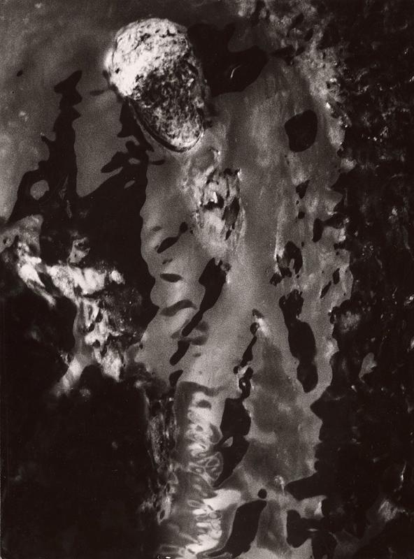 Martin Martinček - Fantázia prírody. Vietnam: Vojak v džungli
