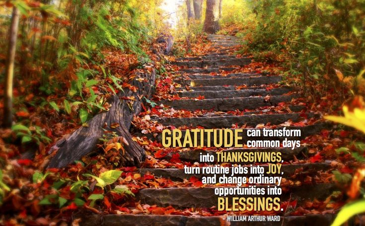 """""""Gratitude can transform common days into thanksgivings, turn routine jobs into joy, and change ordinary opportunities into blessings""""  - William Arthur Ward. ESA 2017."""