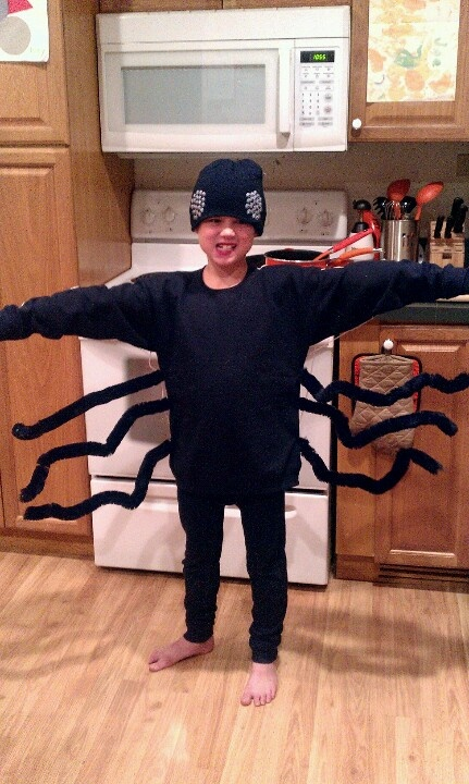 DIY halloween spider costume (cute and inexpensive)...black sweatshirt, large pipe cleaners ...