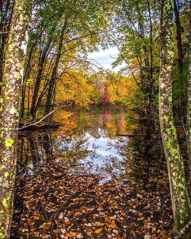 We the stunning sights of fall