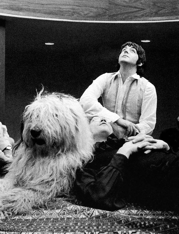 "John Lennon, Paul McCartney and Martha, Paul's sheepdog, photographed in 1968 in Cavendish Avenue. Paul loved Martha and dedicated her ""Martha my dear"", a song included in Beatles' White Album. She spent her entire life with McCartneys and died at 15 in 1981 at Paul's farm in Mull of Kintyre, Scotland."