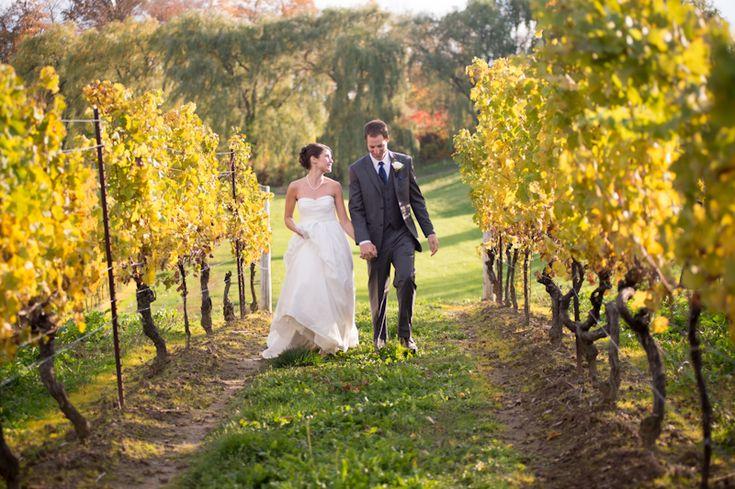 Vineland Estates bride and groom in vineyard