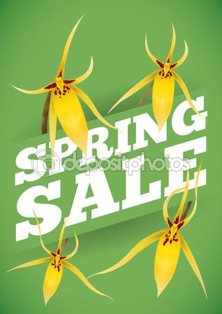 Spring Sale Advertising with Yellow Orchids Around it