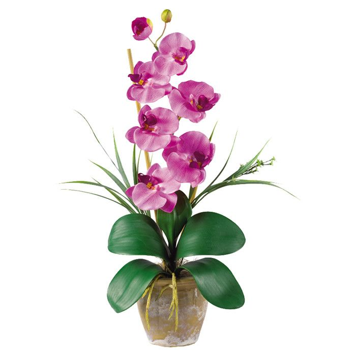 Faux Mauve Phalaenopsis