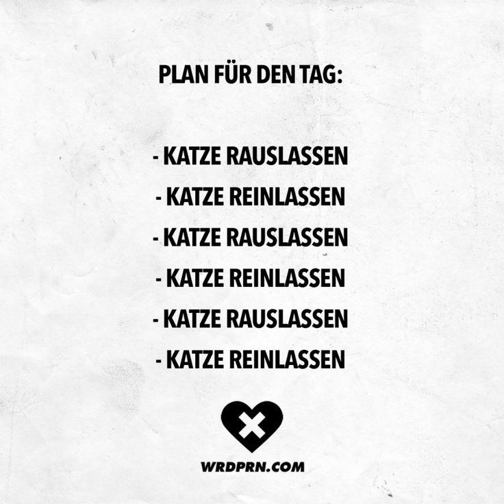 Visual Statements® Plan f