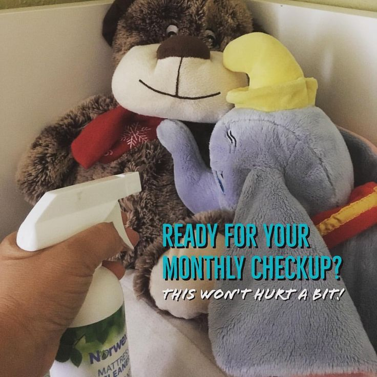 A little #SpringCleaning & tidying up on a quiet Sunday. Time to freshen up the kids stuffed animals and mattresses with the Mattress Cleaner, especially since our allergies has kicked up! #NorwexClean #mattresscleaner #nomoreallergies #cleanhasnosmell #stuffedanimals #naturalcleaning #greenproducts #norwexingwithcathe #norwex #norwexconsultant #helpswithasthma
