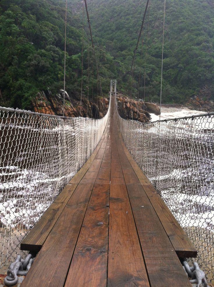 Tsitsikamma National Park, South Africa  (suspension bridge)