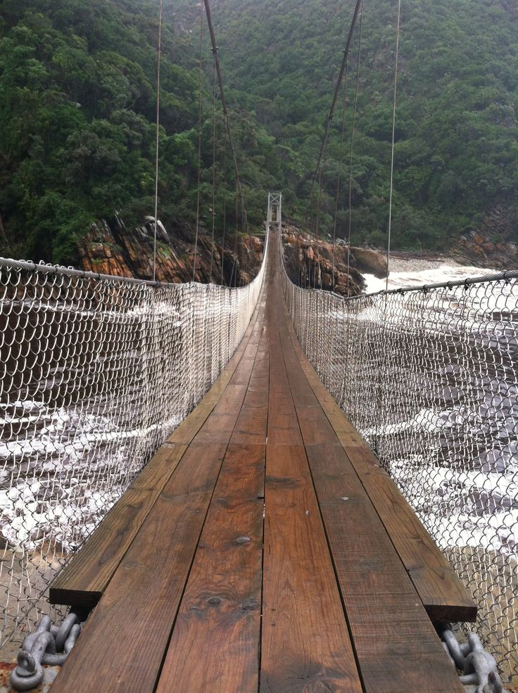 Tsitsikamma National Park, South Africa  (suspension bridge)