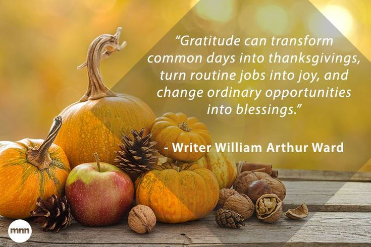 If you need a little help finding some wise words to express your thoughts, read through these dozen quotes on gratitude for inspiration.