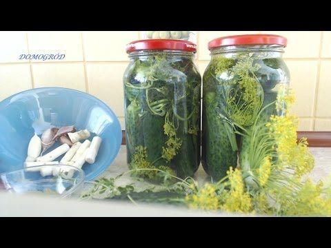 Jak zrobić dobre kiszone ogórki - YouTube