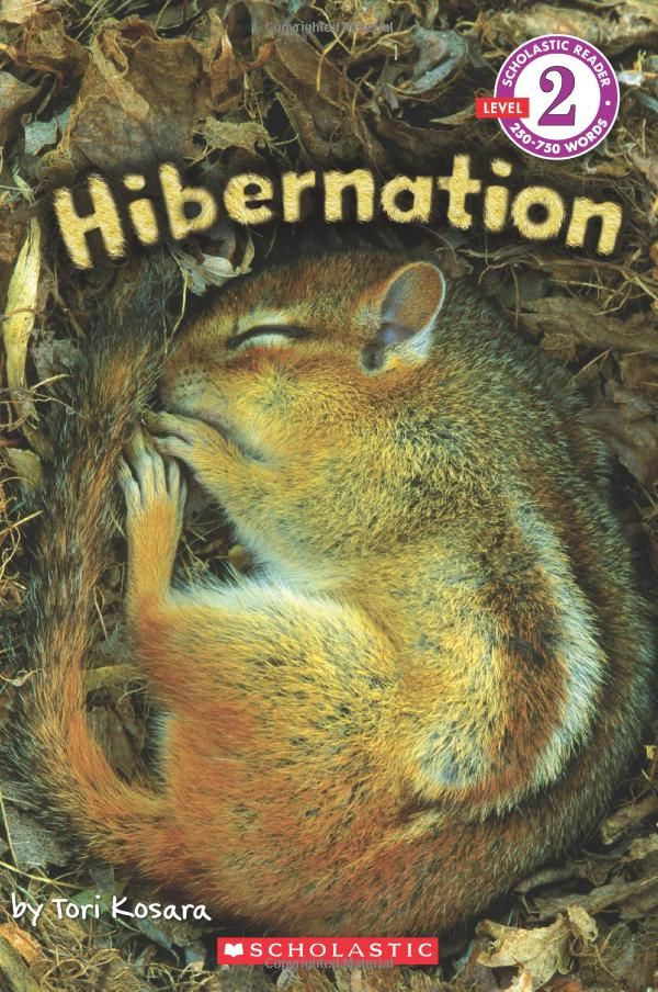 "High-quality photos of wild animals sleeping in their dens, gathering food, and plenty of fun facts for kids about how  mammals, reptiles, amphibians, mollusks, and fish survive cold temperatures and scarce food during the winter months. 12 science terms to learn, too! ""Hibernation,"" by Tori Kosara"