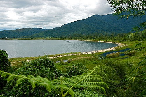 Poso Lake, west side - Central Sulawesi - Indonesia