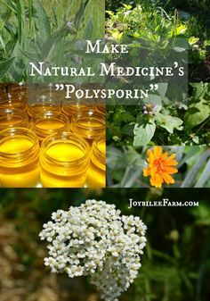 "You can make a simple yet potent herbal ointment that is as effective as the OTC antibiotic ointment for pennies, if you grow your own herbs. But even if you have to buy the dried herbs, it's still an inexpensive alternative. It's safe enough for children. Use Natural Medicine's ""Polysporin"" for scrapes, cuts, bruises, and bites and for the times when kisses just aren't enough."