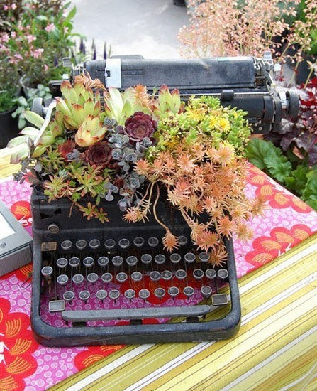 A destroyed typewriter needn't be thrown away. Use it as a succulent planter!