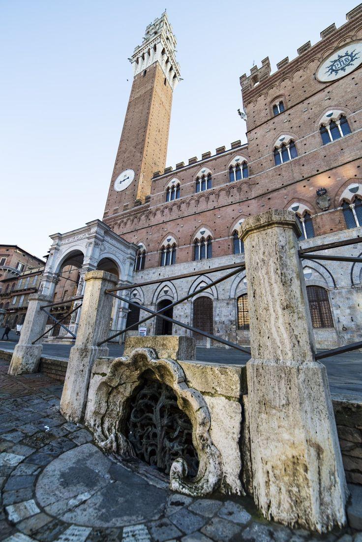 Il Gavinone e Palazzo pubblico - Foto di Gianluca Mele photographer su Flickr - https://www.flickr.com/photos/giangio1975/15864337768/ - #Siena #Toscana #Gavinone #PalazzoPubblico