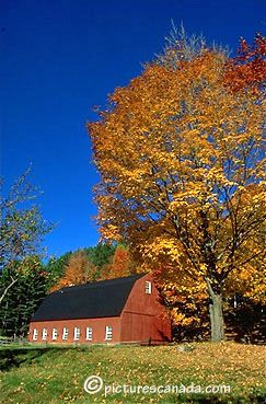 Quebec, Eastern Townships, North Hatley