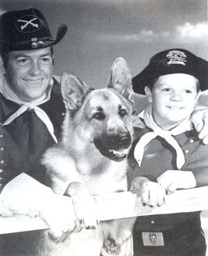 The Adventures of Rin Tin Tin, Starring Lee Aaker, James Brown, Rin Tin Tin II. ABC TV Series Oct.1954-May 1959.  Loved this show as an infant, but for the life of me I can't remember any of the stories.