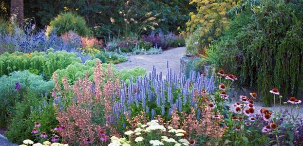 Garden Ideas - Perennial Gardens   The Diggers Club