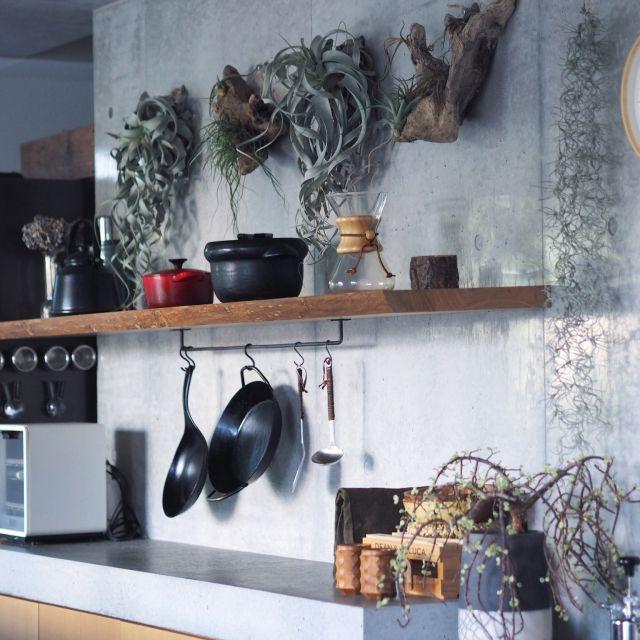 neru0414さんの、コンクリートキッチン,ディッキア,コンクリート打ちっ放し,観葉植物,キッチン,のお部屋写真