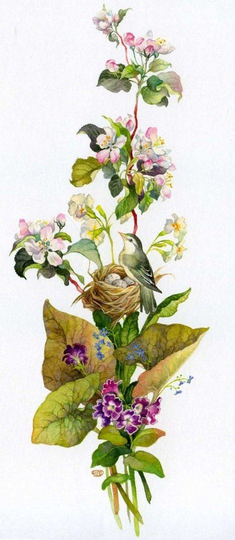 mi jardin secreto nancy friday pdf free