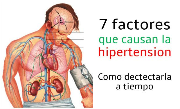 hipertension causas