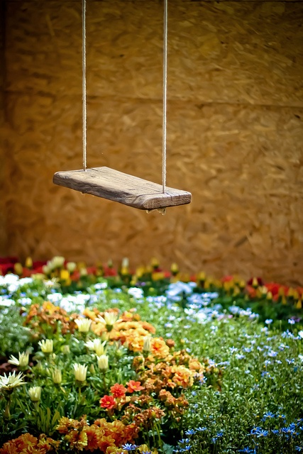 This swing + good book = wonderful afternoon